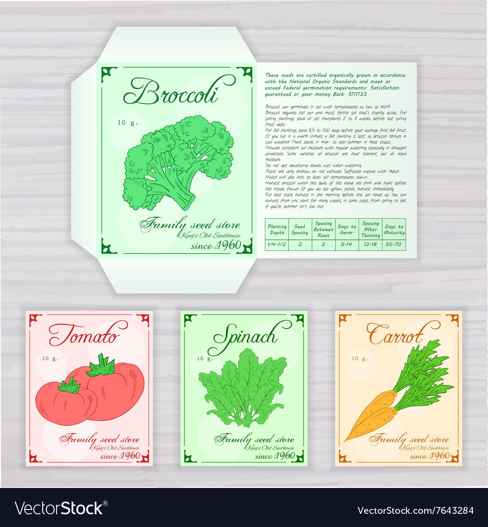 printable template of seed packet with image name vector image. Black Bedroom Furniture Sets. Home Design Ideas