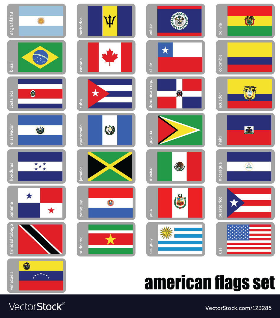 Flags america vector image