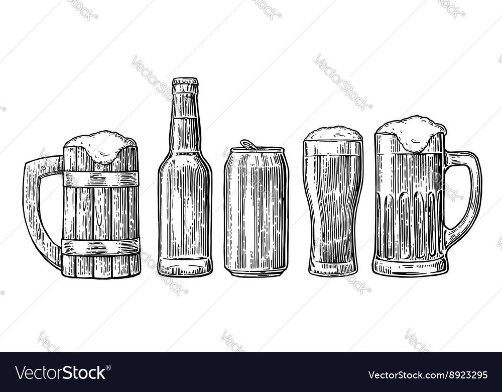 Beer glass mug can bottle hop vector image
