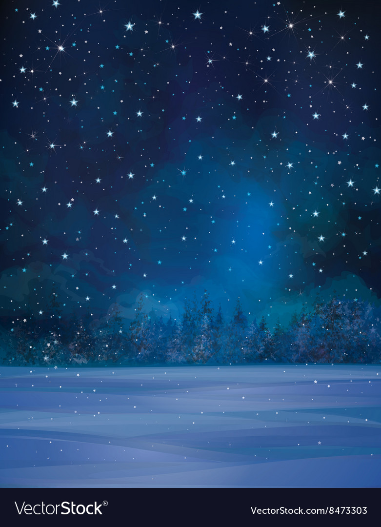 Winter night stars vector image