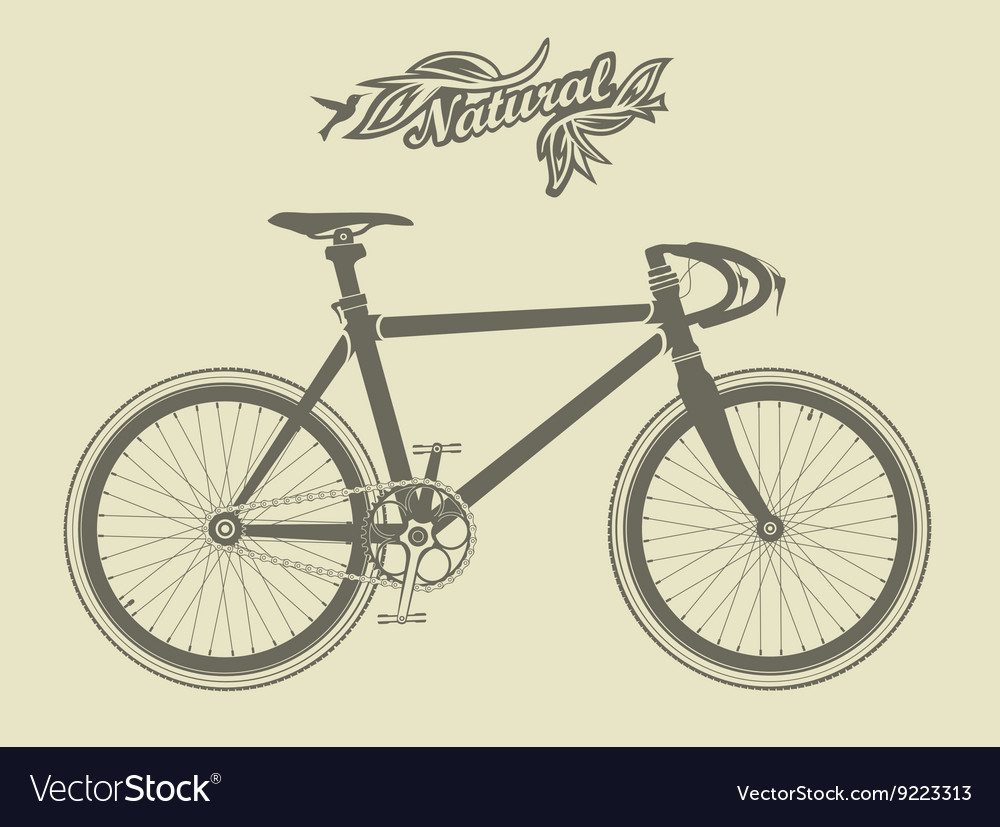 Vintage sport bike with a bird and the vector image