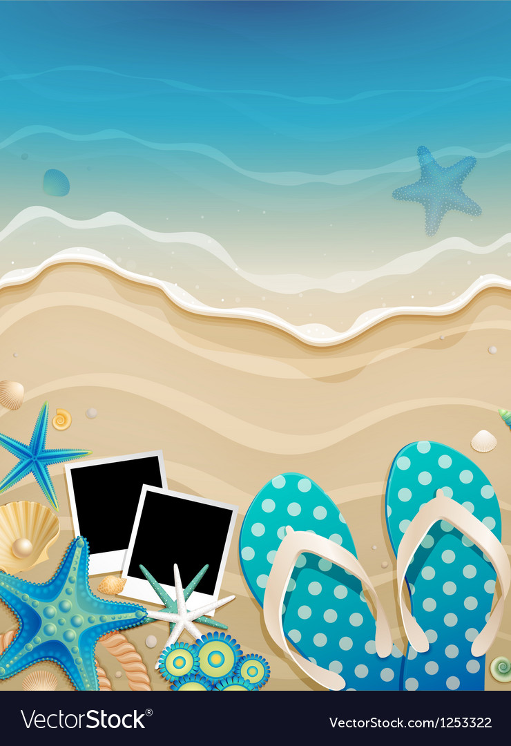 Wave shalls and photo vector image