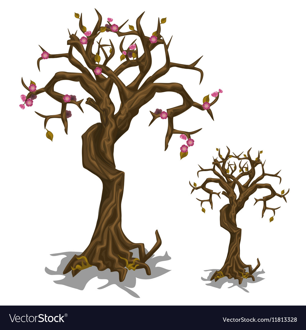 Dead tree with few flowers symbol of rebirth vector image biocorpaavc Gallery