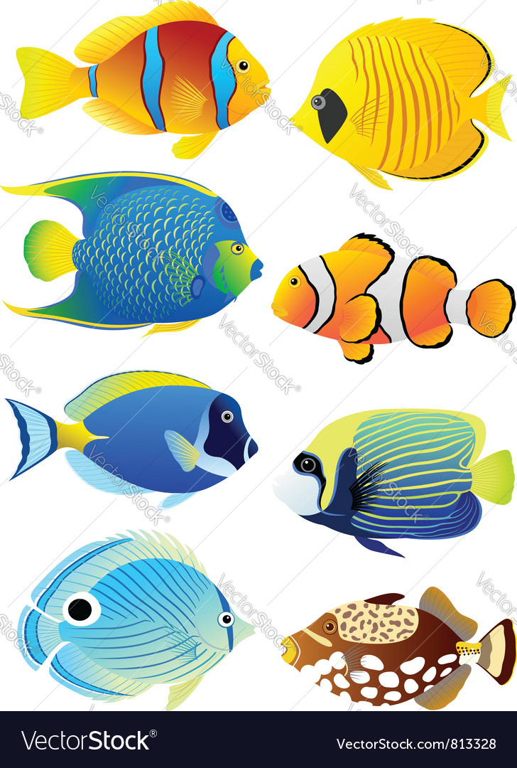 Set of tropical fish royalty free vector image for It s about the cross go fish