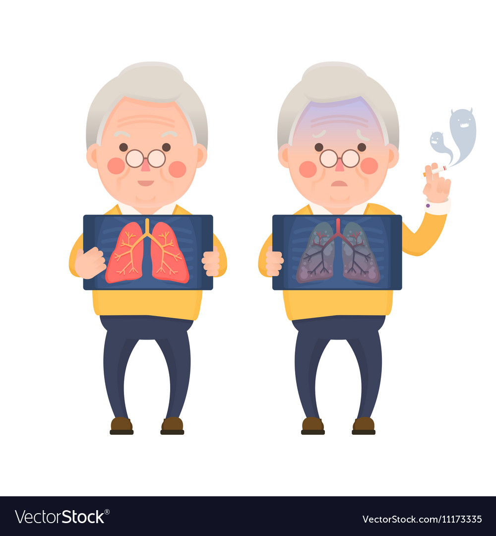 Healthy Lung Problem Lung vector image