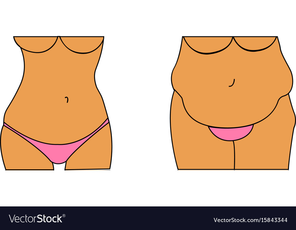 A fat and thin female belly vector image
