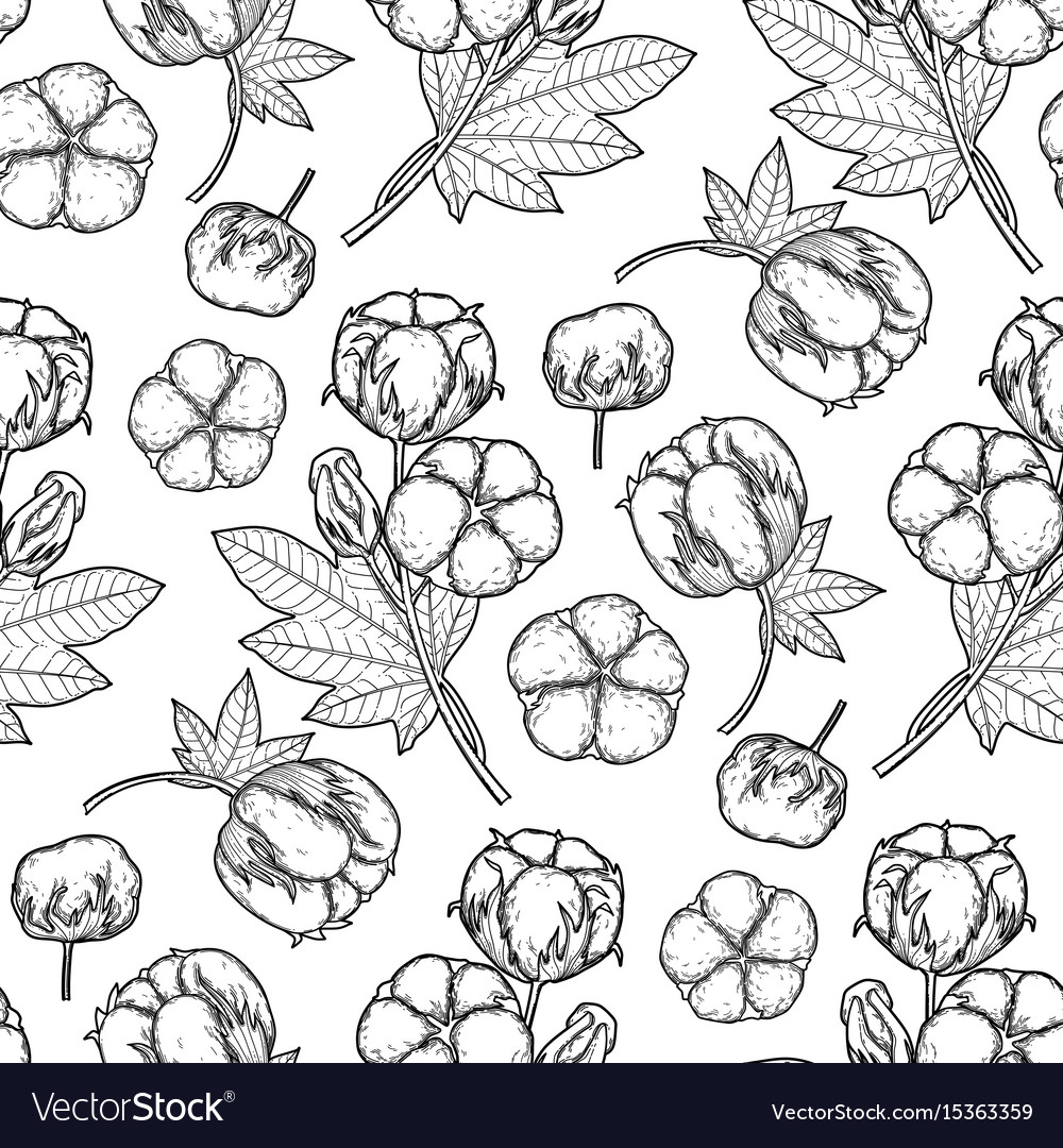 Graphic cotton pattern vector image