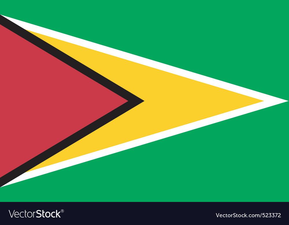Guyanese flag vector image