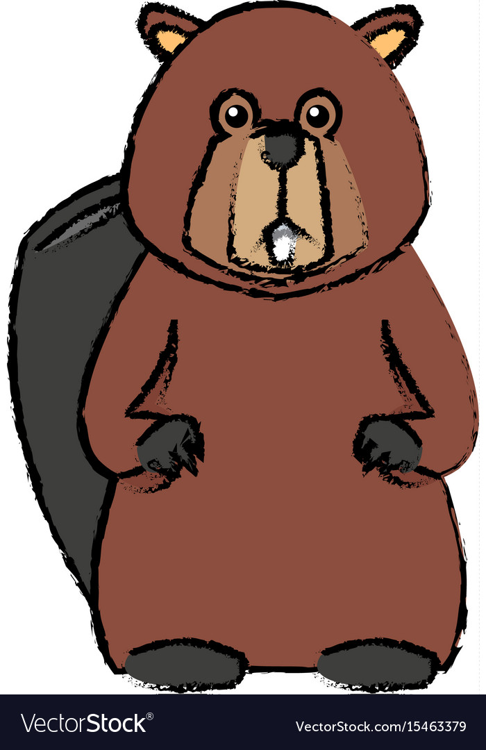Portrait of beaver cute face of aquatic fluffy vector image
