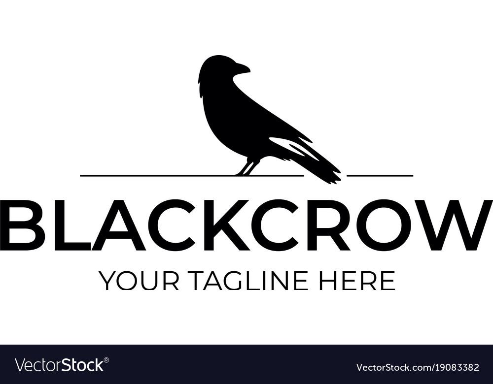 Black crow logo template royalty free vector image black crow logo template vector image sciox Choice Image