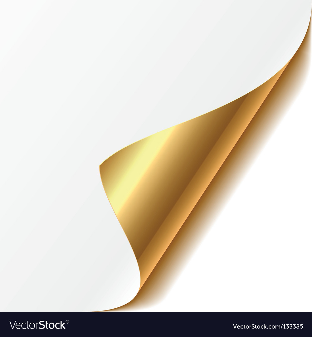 Curled corner vector image