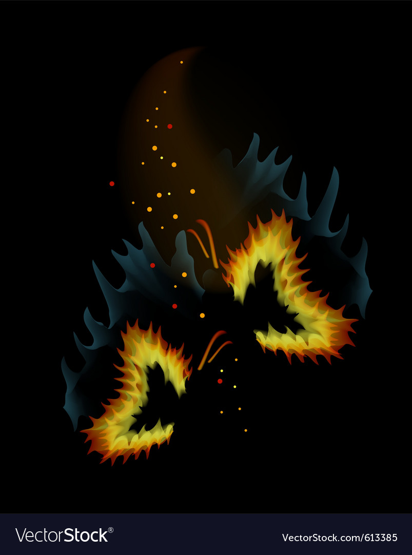 Two fiery butterflies on a black background with s vector image