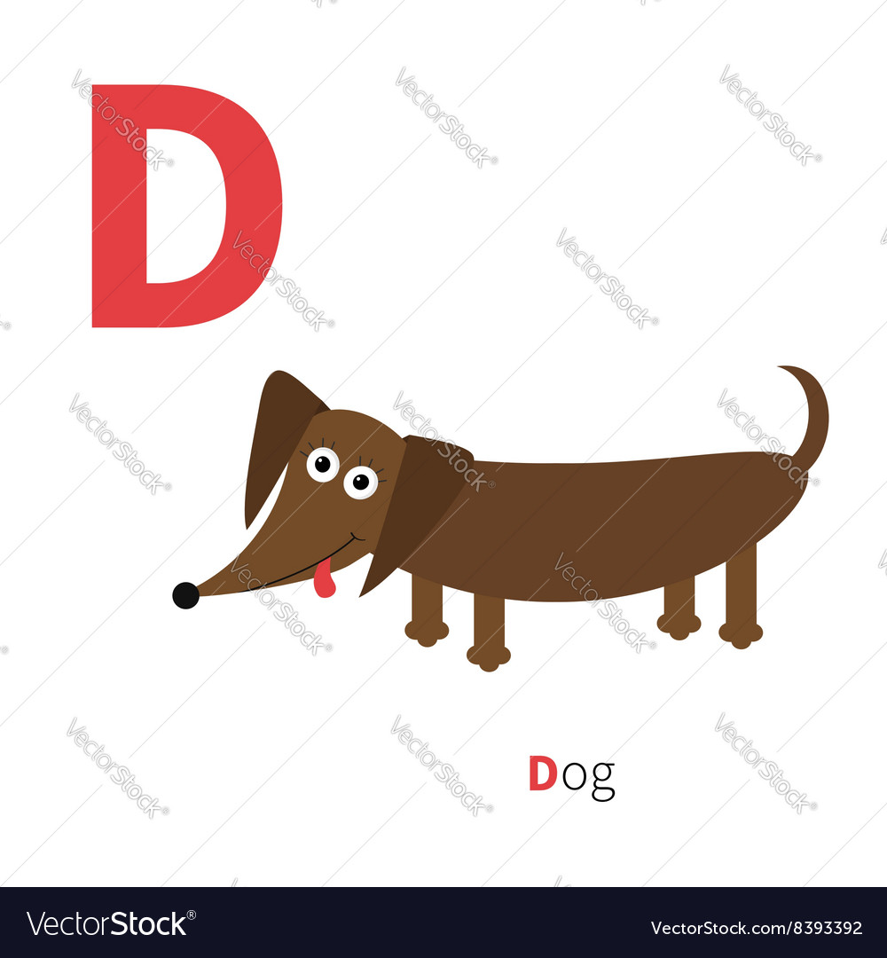 Letter D Dachshund Dog Zoo alphabet English abc vector image