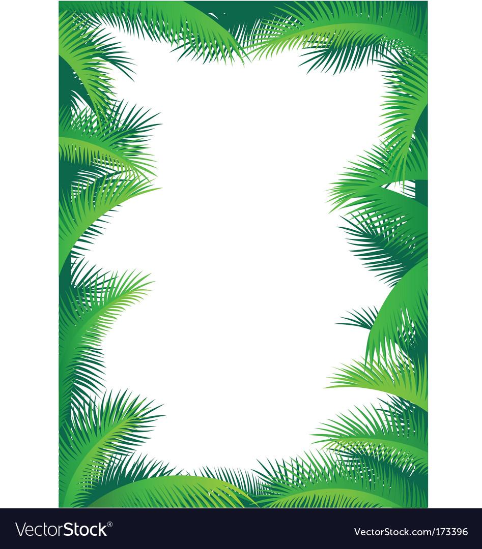 Palm border vector image