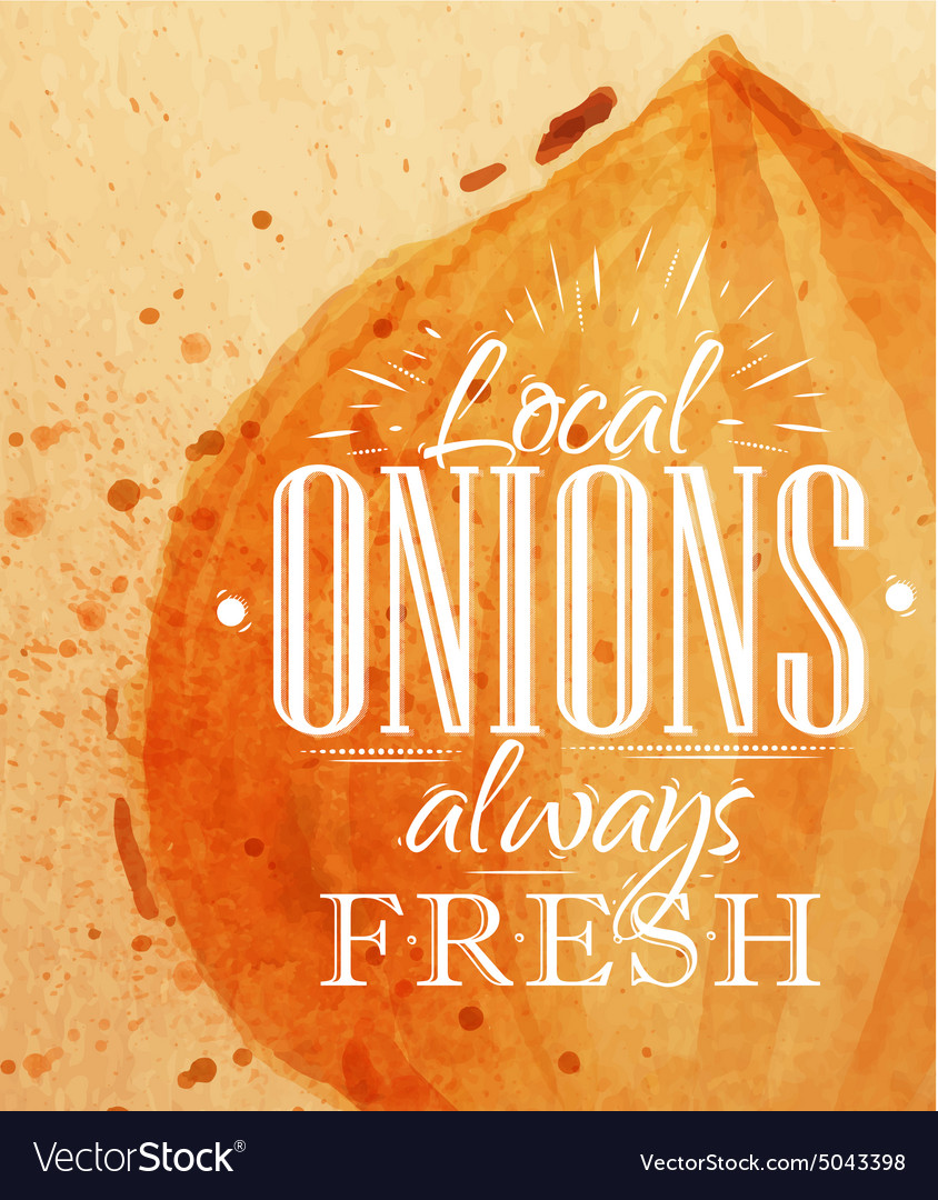 Poster onion vector image