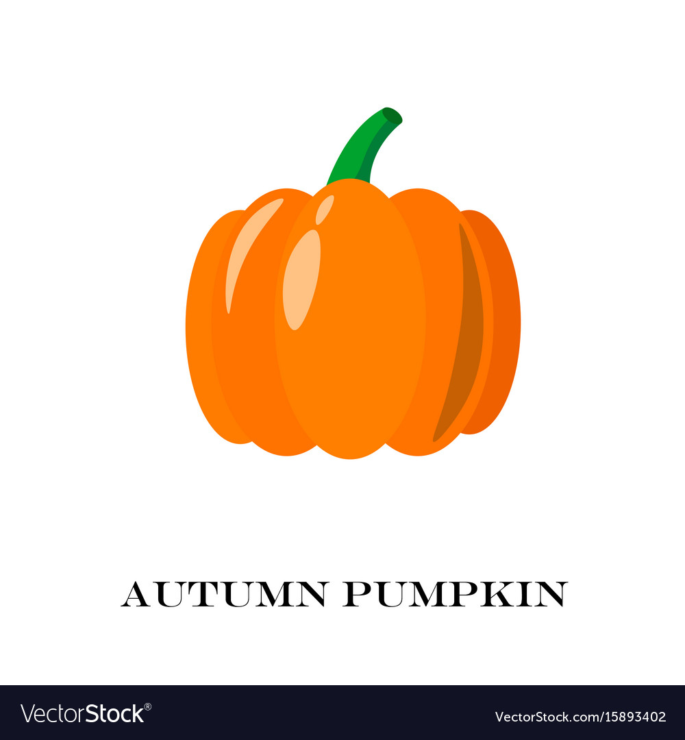 Pumpkin isolated flat and cartoon design style vector image