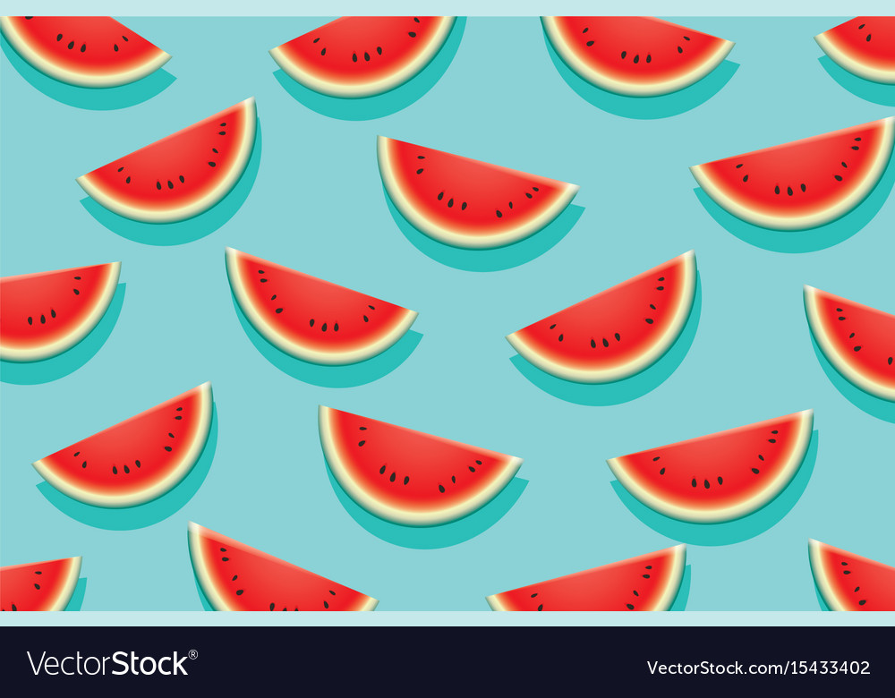 Watermelon slice on blue background summer time vector image