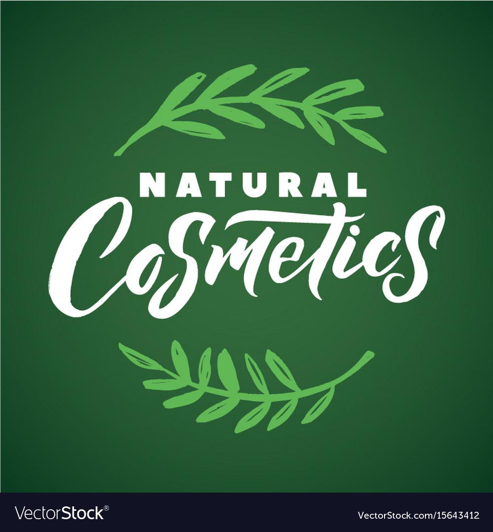 Natural cosmetics logo stroke green leaves vector image