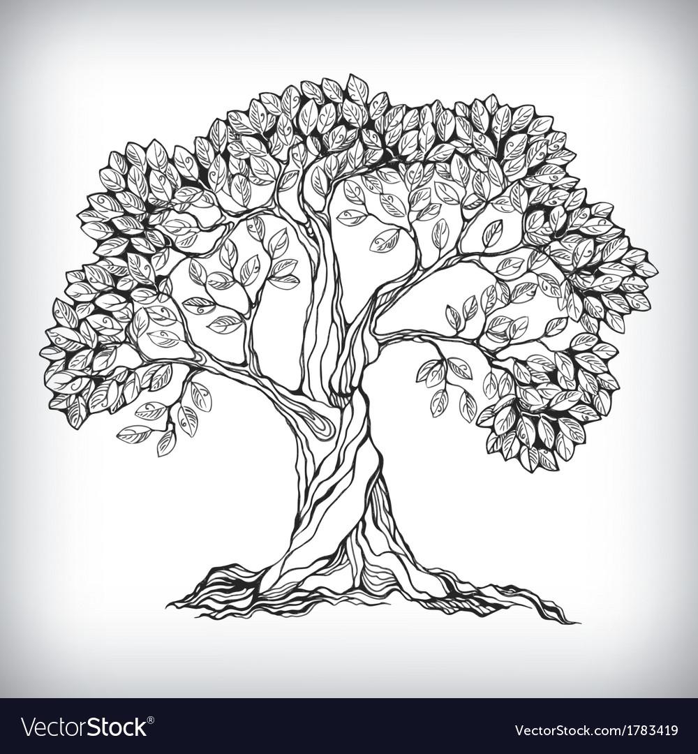 Hand drawn tree symbol vector image
