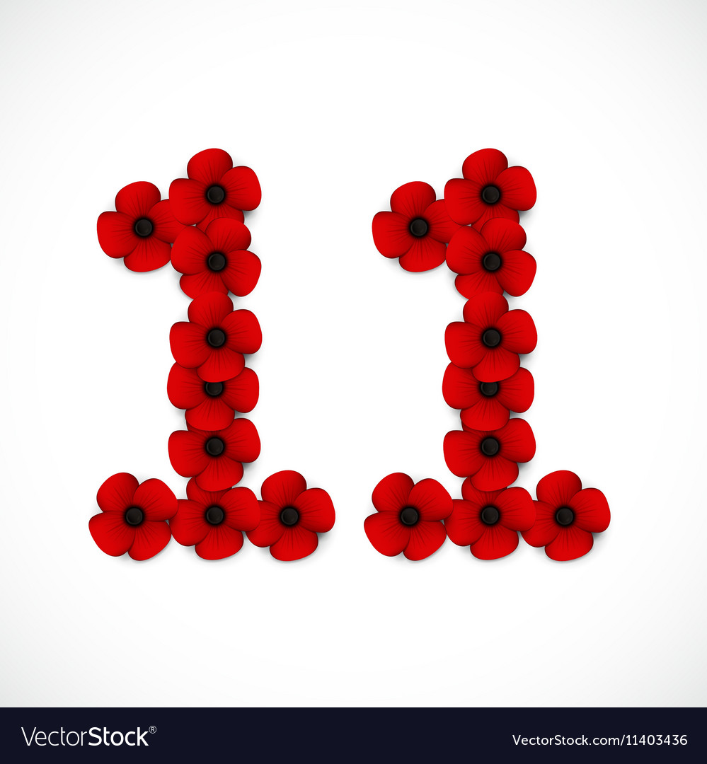 Poppies number eleven vector image