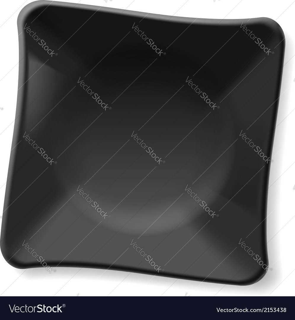 Black plate vector image