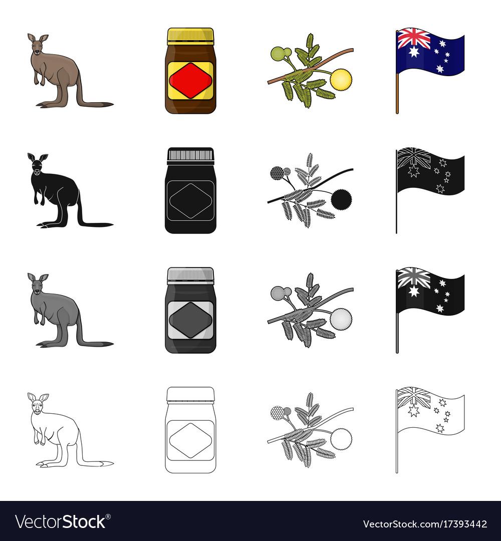 Kangaroo apple sauce chutney australian acacia vector image