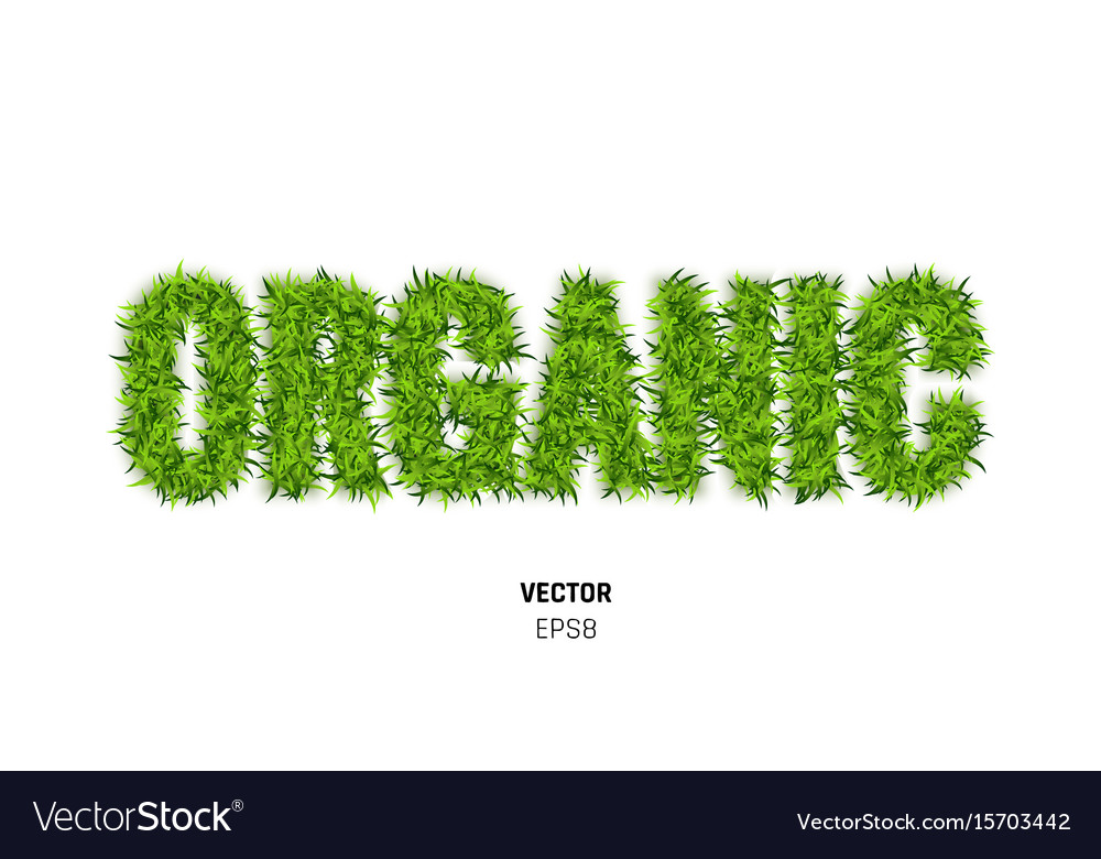 Organic made of green grass vector image