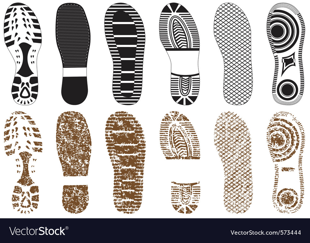 Set of footprints vector image