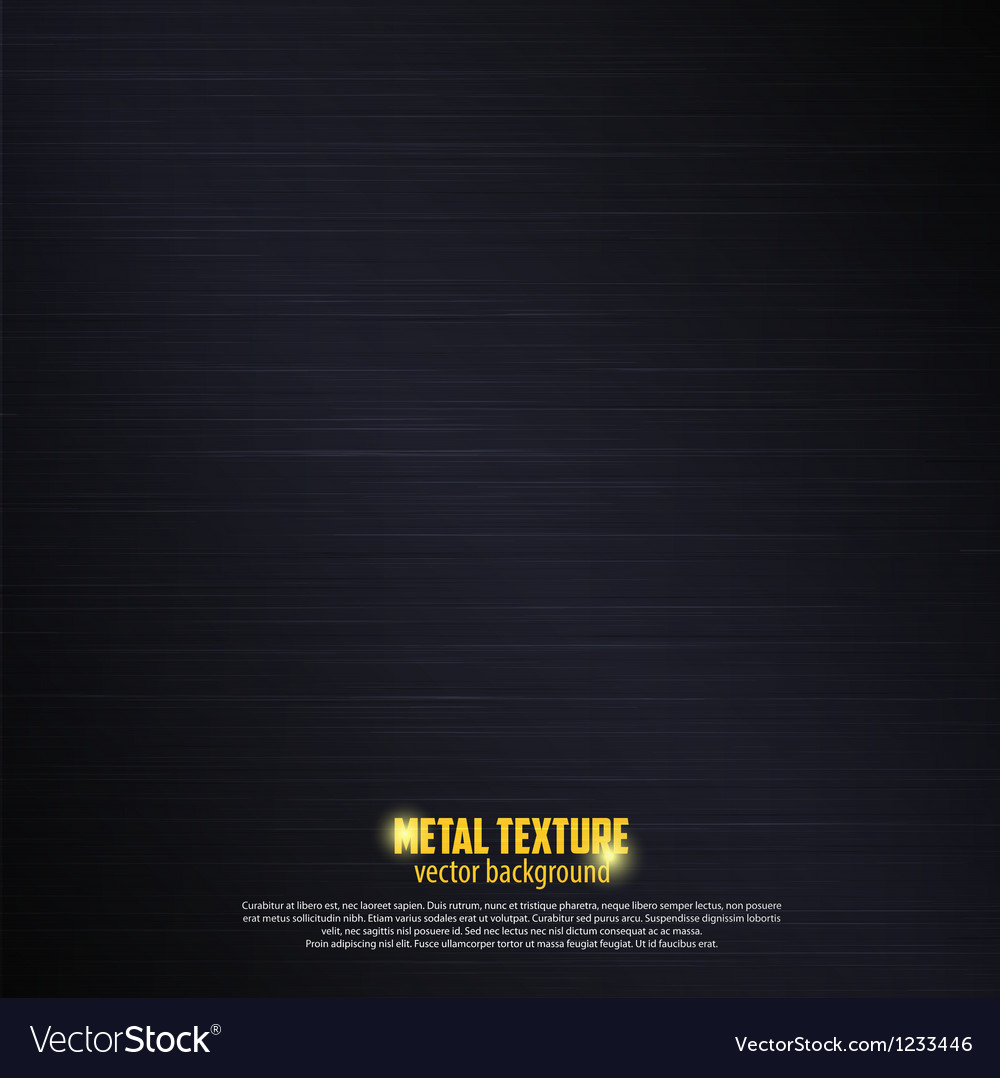 Black metal background 2 vector image