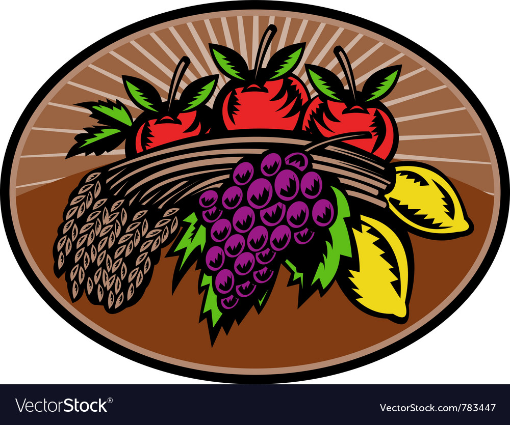 Fruit wheat harvest vector image