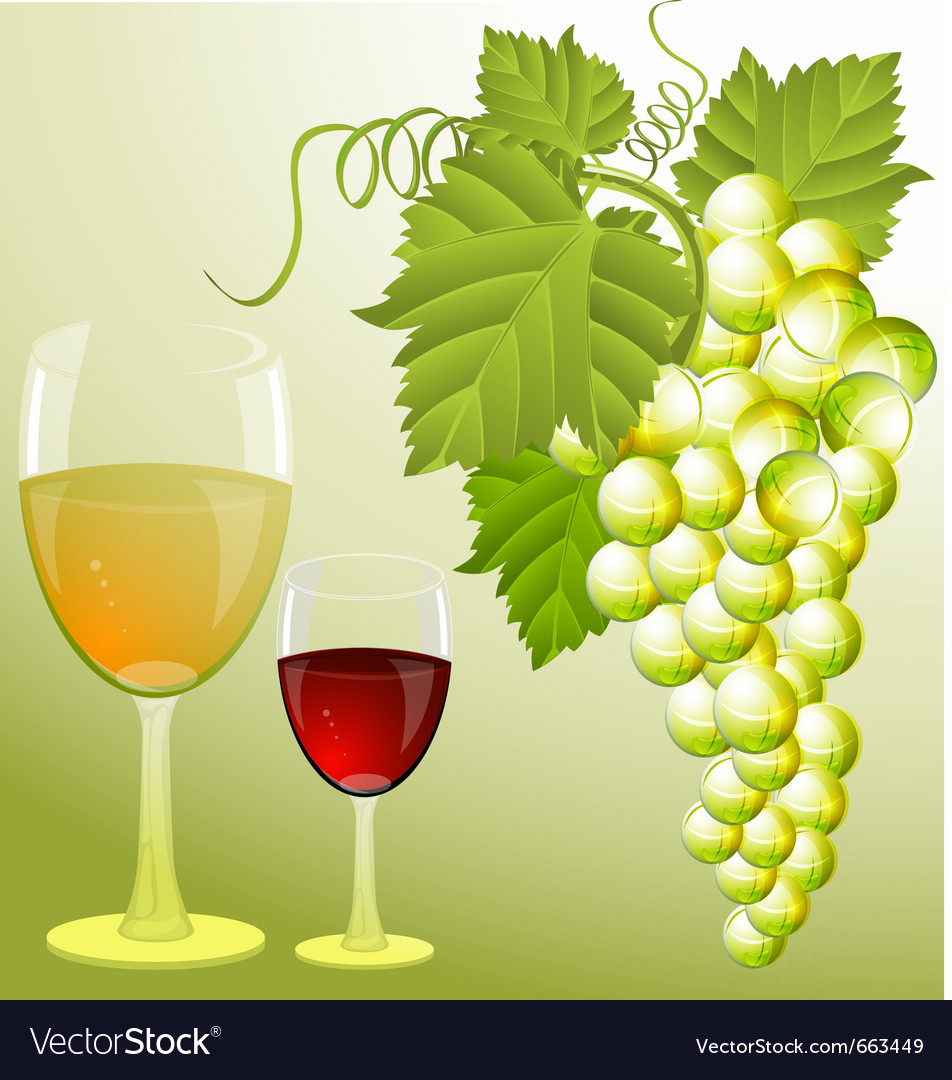 Grapes and wine Vector Image