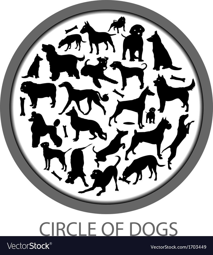 Circle of Dogs vector image