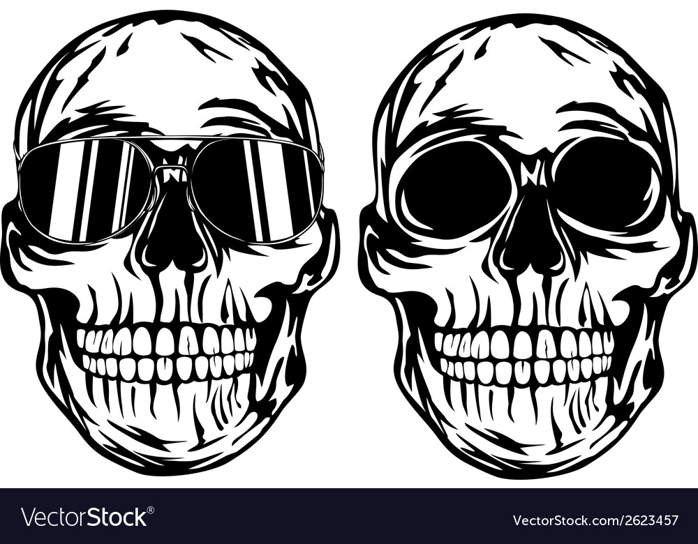 Skull and skull in sunglasses vector image