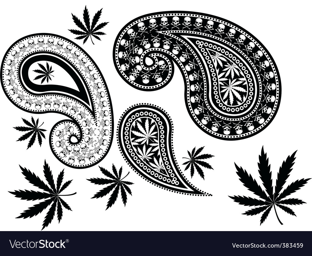 Paisley cannabis Vector Image