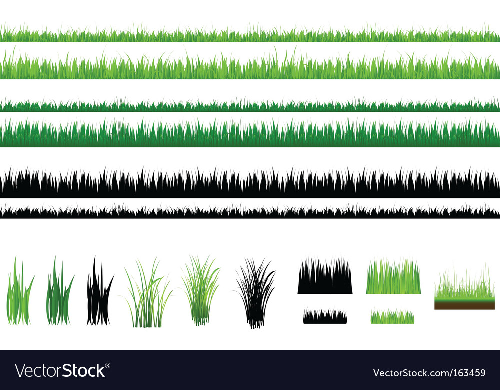 Grass collection isolated on white vector image