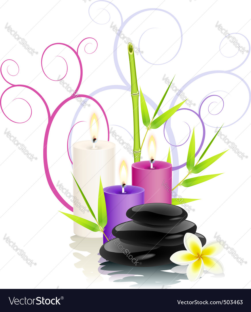 Spa theme vector image