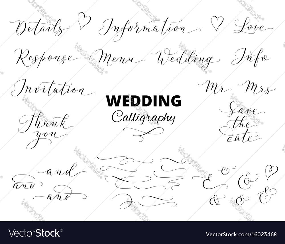 Wedding hand written calligraphy set isolated on vector image