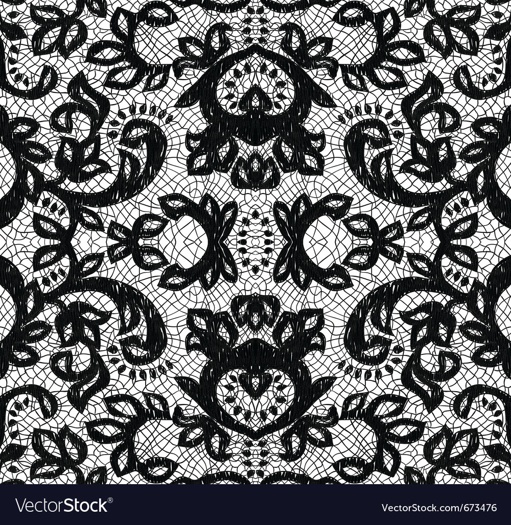 Beautiful seamless lace vector image