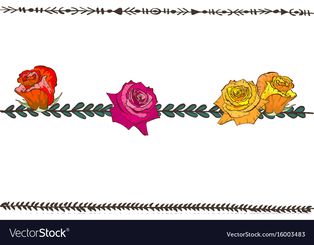 Doodle floral line with colorful roses flower vector image
