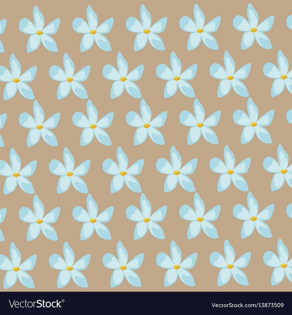 Flower jasmine ornament seamless pattern vector image