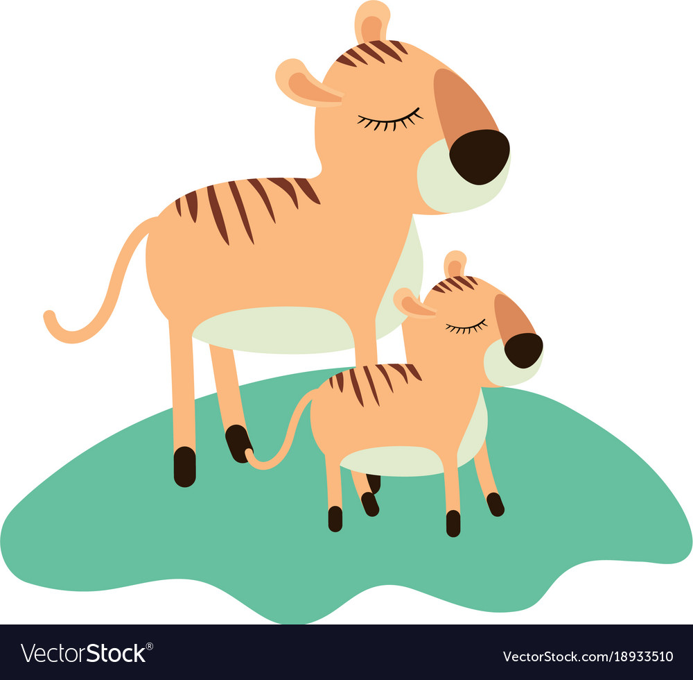 Cartoon tiger mom and cub over grass in colorful vector image