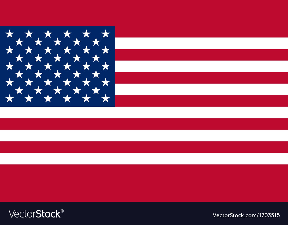 American USA Flag With Real Colours And Proportion vector image