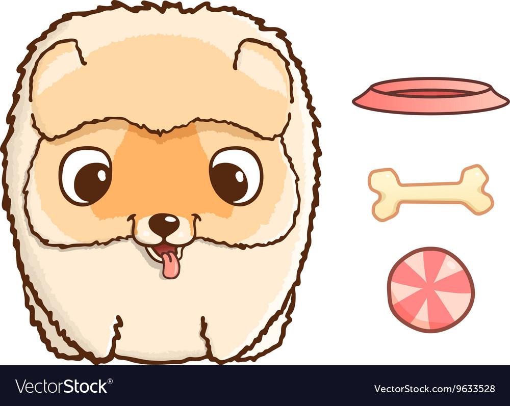 Cute pomeranian puppy vector image