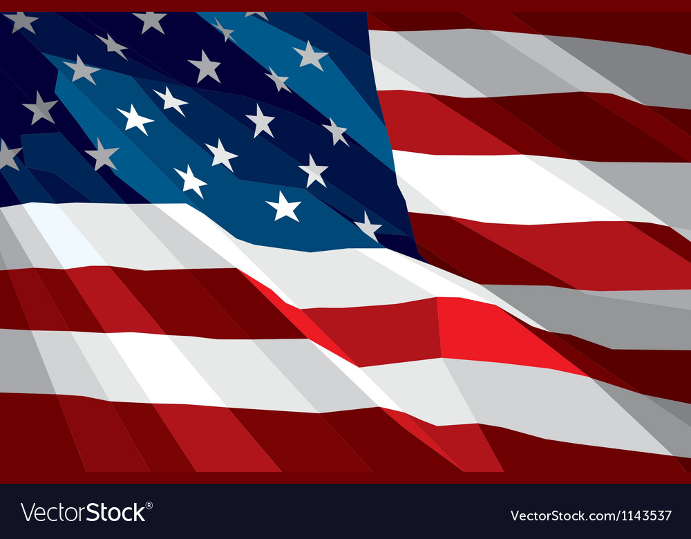 Flag USA vector image