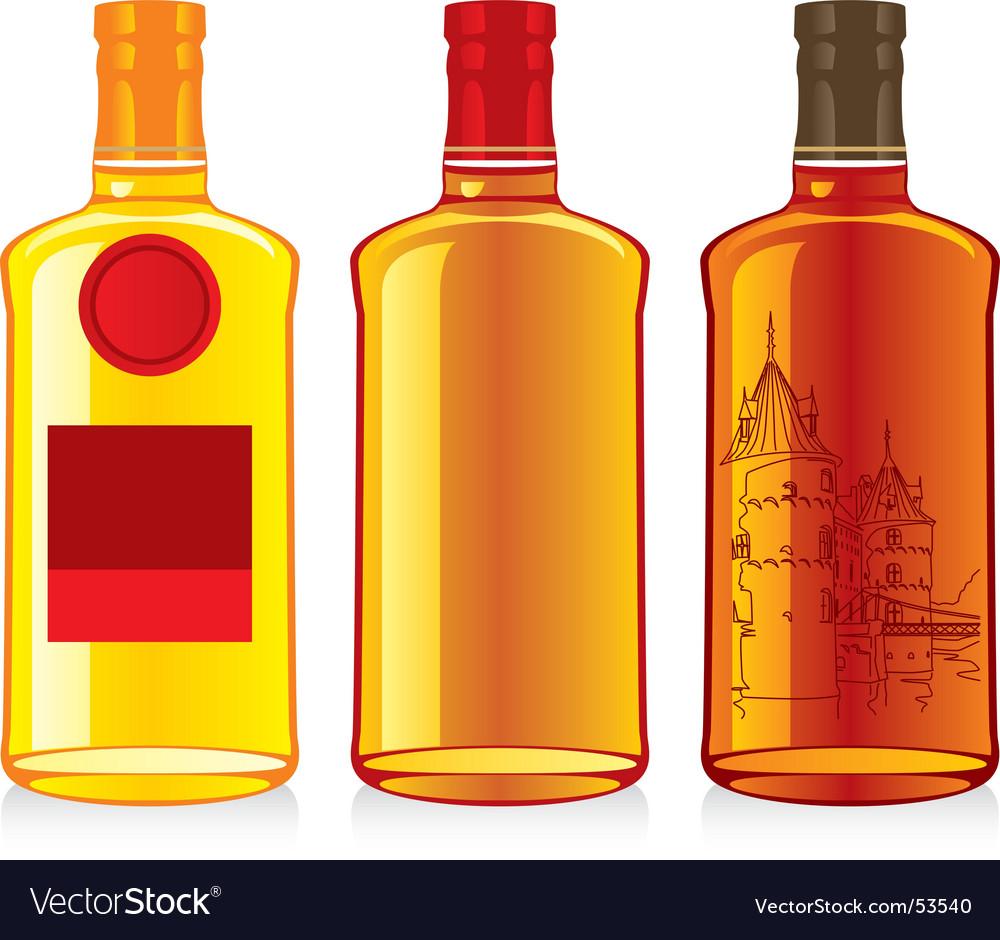 Whiskey bottles vector image
