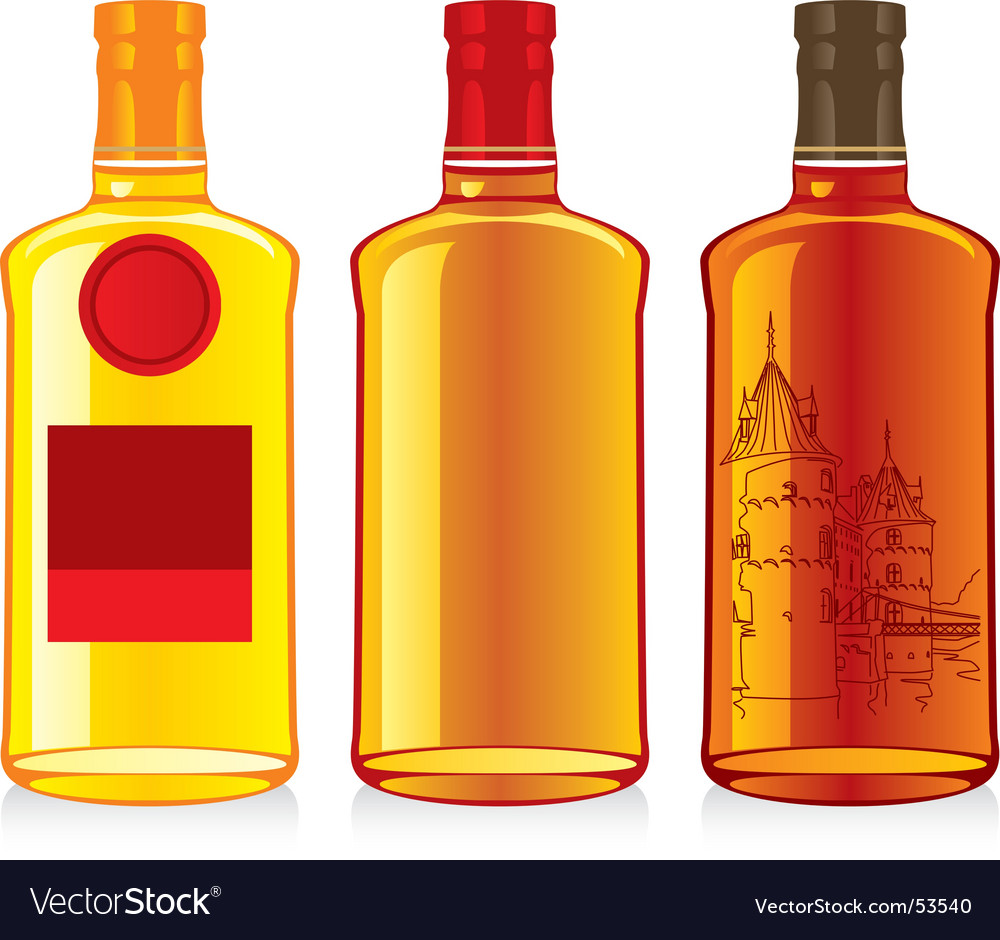 Whiskey bottles vector image