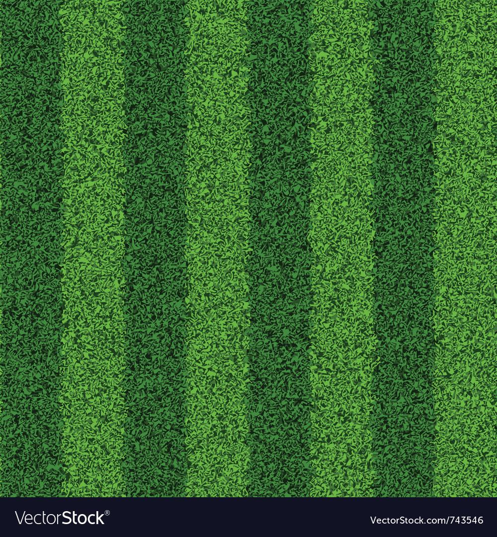 Seamless green grass field vector image