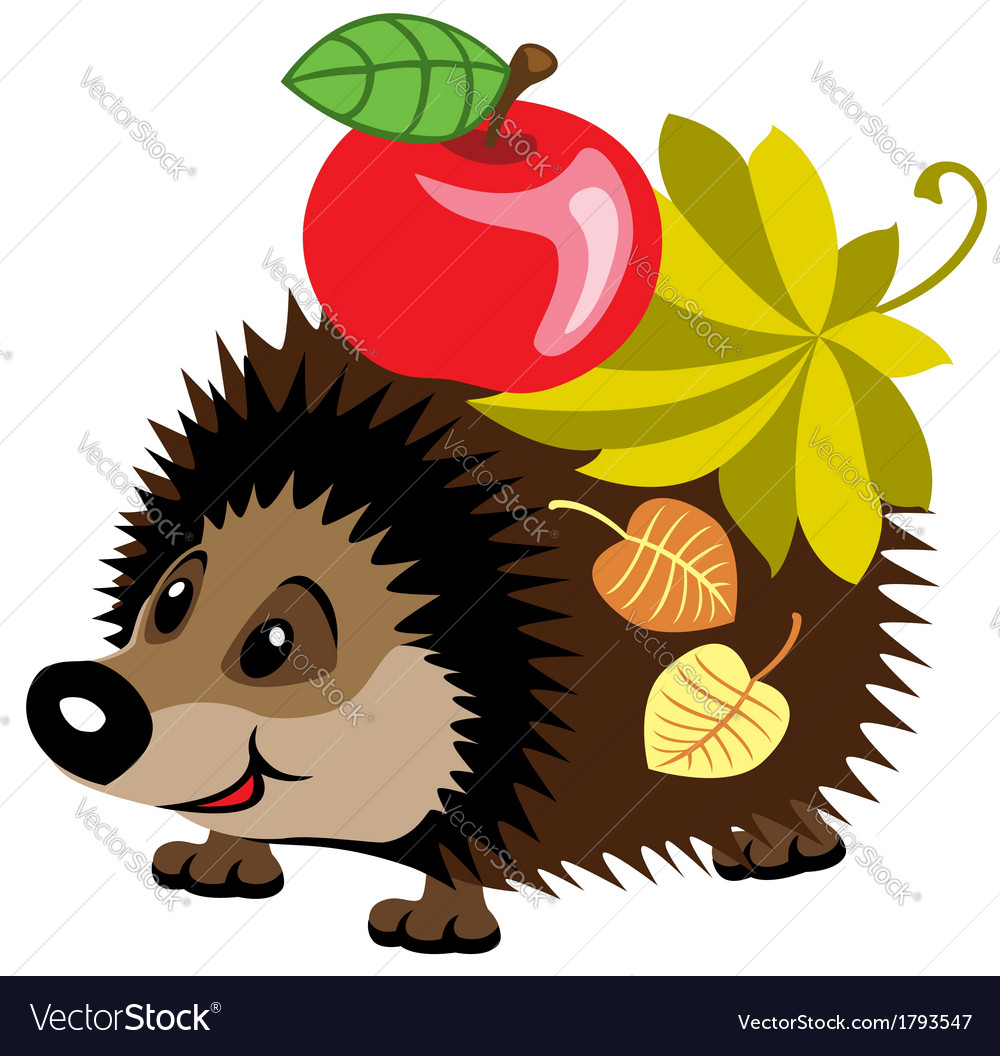 Cartoon hedgehog vector image