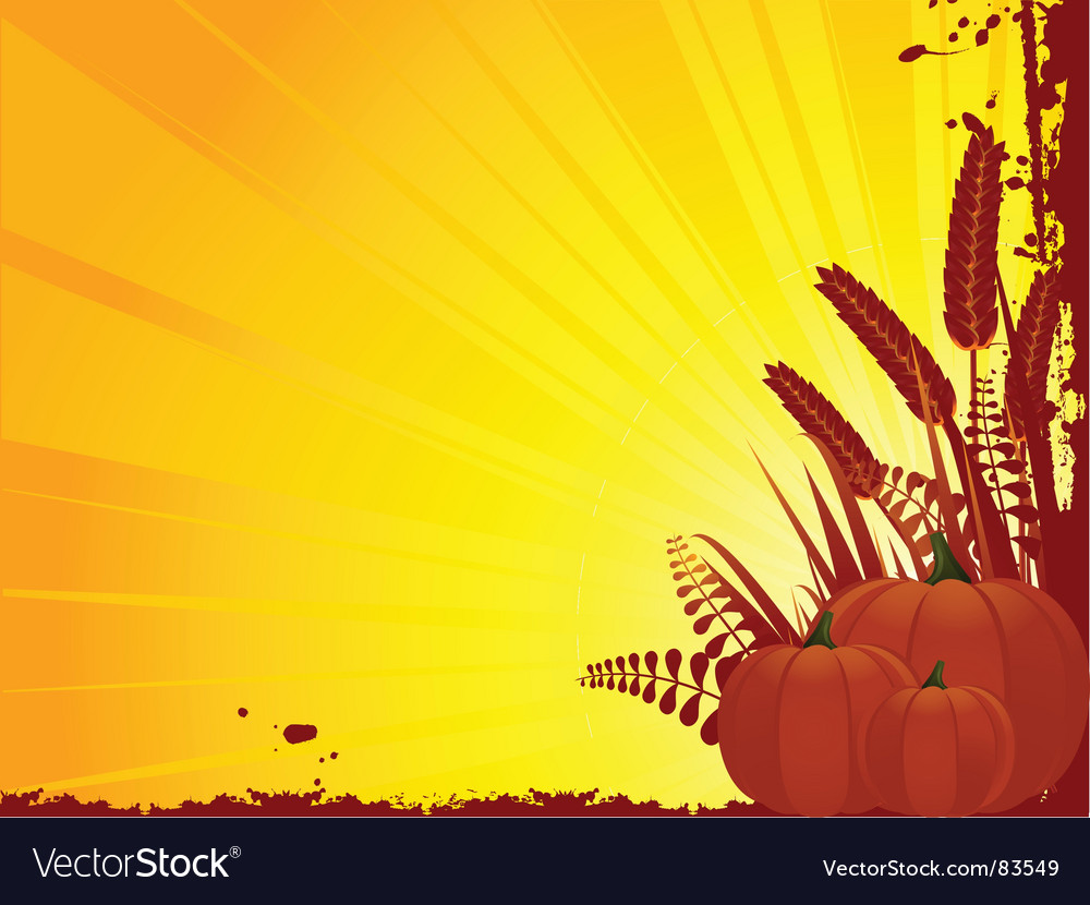 Grunge pumpkin and corn vector image