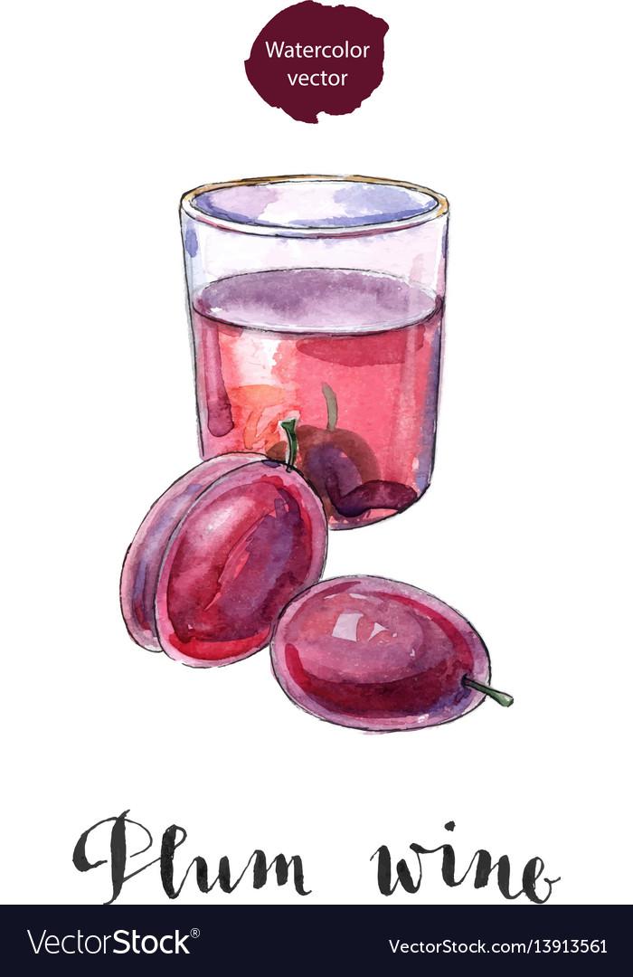 Glass of plum wine vector image